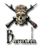 Barracuda Web Design