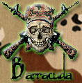 Barracuda Web Design & Images
