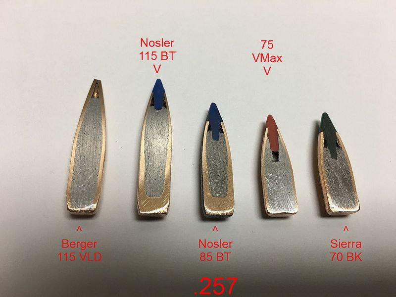 Bullet Cross Sections - PredatorMasters Forums